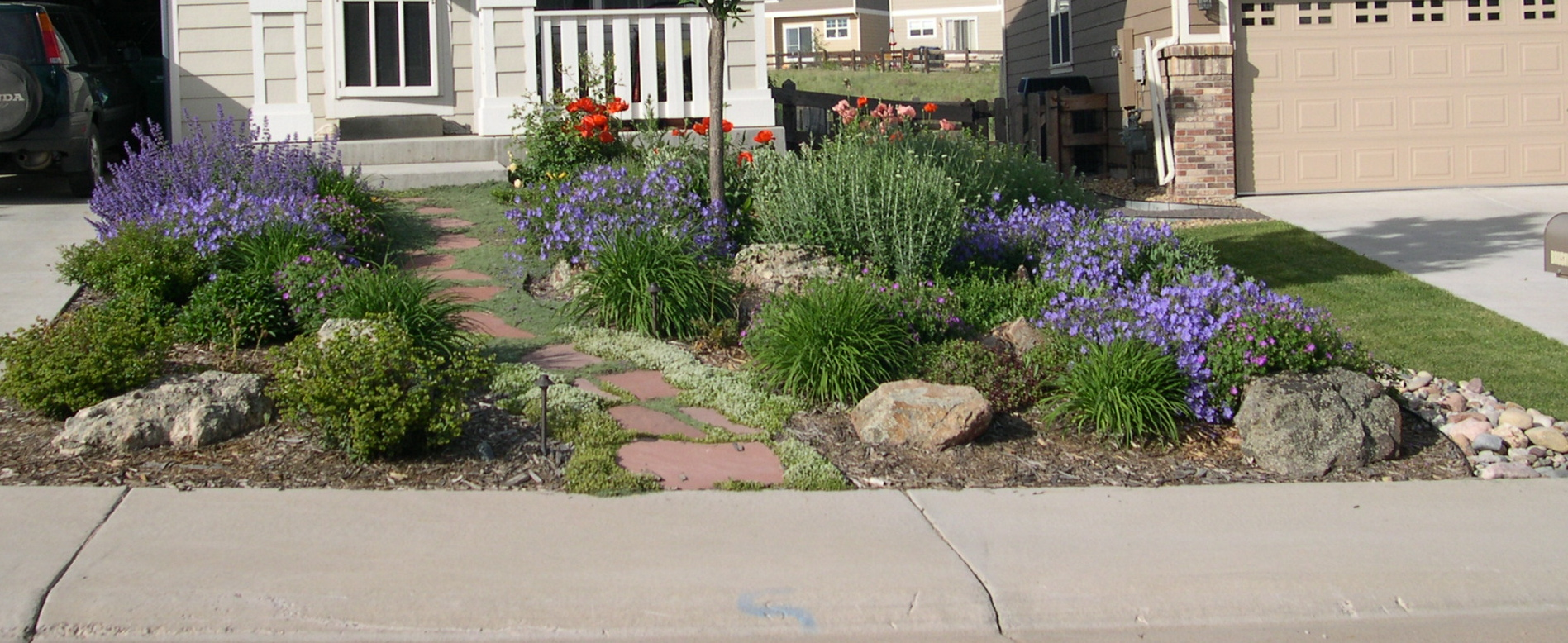 Word of the day xeriscaping lu 39 s news views for Low maintenance lawn design