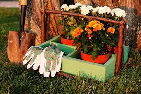 autumn gardening2